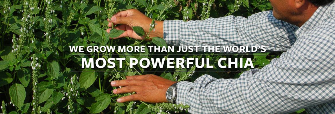 We grow more than just the world's most powerful chia